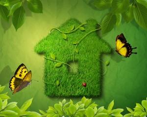 Go Green Carmel Valley | Live
