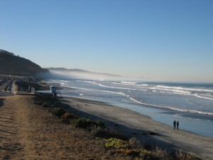 Carmel Valley San Diego Community | Treasure in Torrey Pines | Cynthia Dial