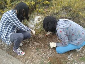 Carmel Valley San Diego Community | Gonzales Canyon Project | Key Club