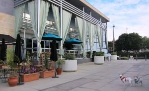 Carmel Valley San Diego Community | Shade Manhattan Beach | Cynthia Dial