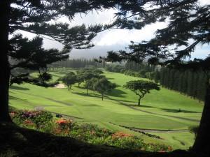 Carmel Valley San Diego Community | Cynthia Dial | Hawaii Maui Golf