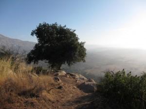 Carmel Valley San Diego Community | Cynthia Dial | Rancho La Puerta