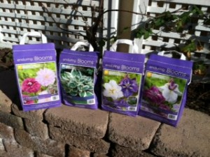 Carmel Valley San Diego Community | Stevie Hall | Flower Seed Packets