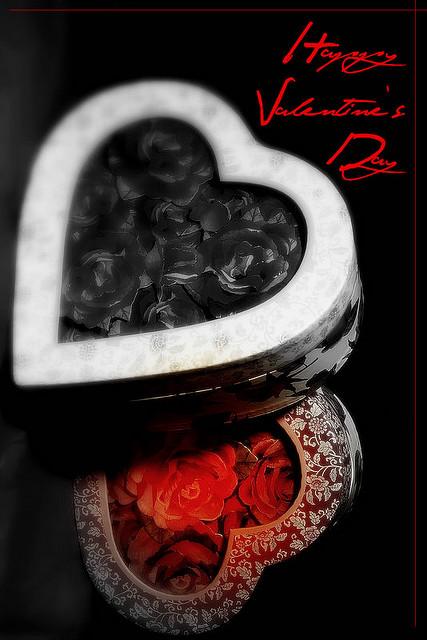 Carmel Valley San Diego Community | Dr. Kanner | Valentine's Day