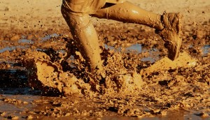 Carmel Valley San Diego Community | Darcie Czajkowski | Running