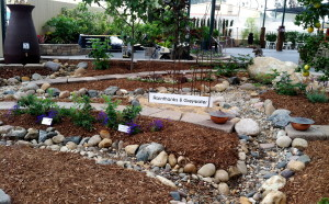 Carmel Valley San Diego Community | Stevie Hall | Rainthanks & Greywater