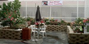 Carmel Valley San Diego Community | Stevie Hall | San Diego Rose Society