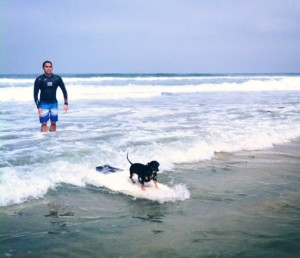 Carmel Valley San Diego Community | Christine Ellingsen | Surfer Dog