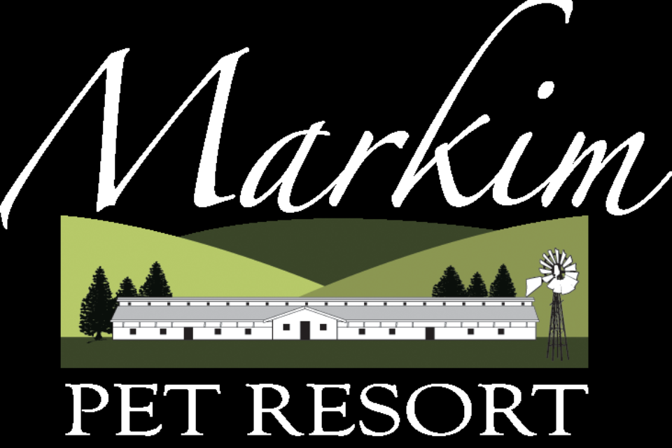 Carmel Valley San Diego Community | Markimg Pet Resort 2